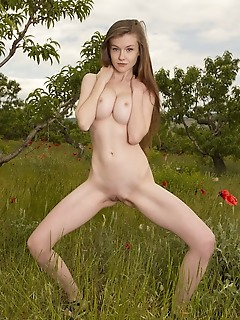 Long haired cutie in nature