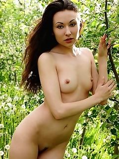 Softcore photography free photos free naked thumbnail pics