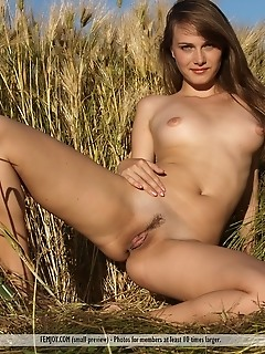 Free femjoy pics femjoy naked nude picture gallery